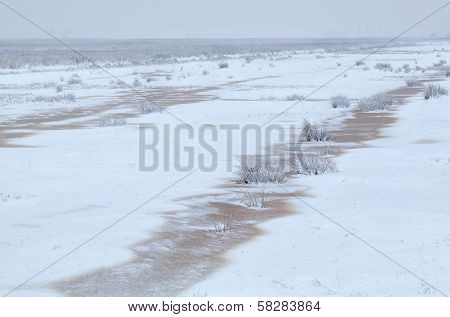 Meadow Covered With Snow In Winter