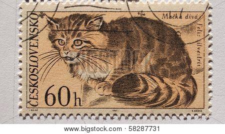 Czechoslovakian Mail Stamp With Wild Cat