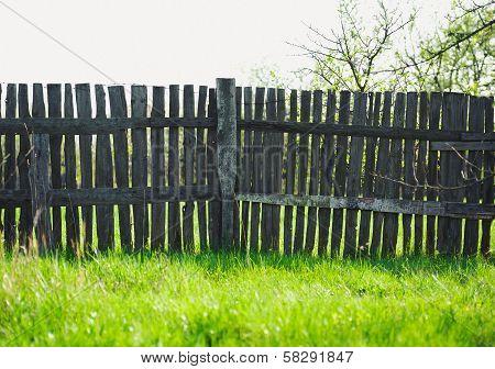 Old Rural Wooden Fence Near Freshness Green Grass