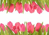 picture of may-flower  - Holiday background with pink beautiful flowers - JPG