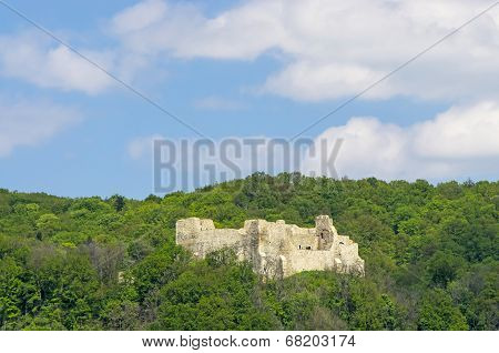 Fortress In Forest