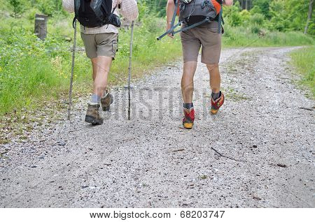 Two Caucasian Man Hiking In The Forest