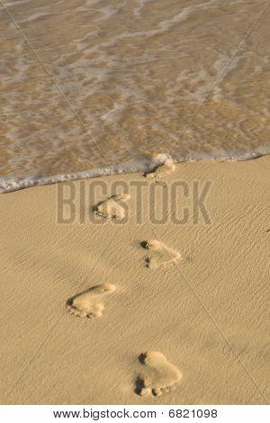 Footprints On White Sand Beach