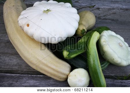 Patty pan squash and zucchini