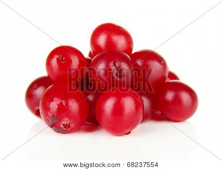 Ripe red cranberries, isolated on white