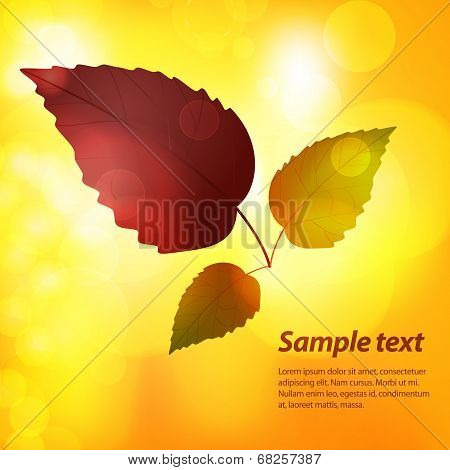 Autumn Leaf Background With Sample Text
