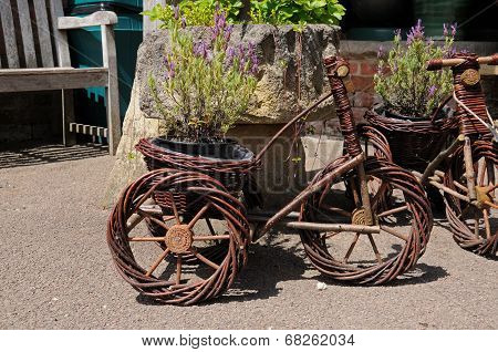 Tricycle plant holder.