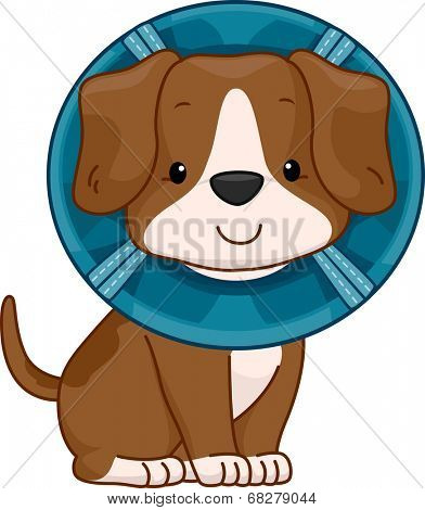 /Illustration of a Cute Dog Wearing an Elizabethan Collar