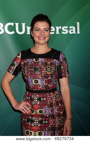 LOS ANGELES - JUL 13:  Casey Wilson at the NBCUniversal July 2014 TCA at Beverly Hilton on July 13, 2014 in Beverly Hills, CA