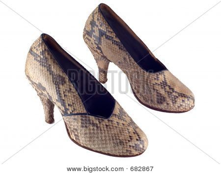 Snake Leather Shoes