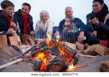 Multi Generation Family Having Barbecue On Winter Beach