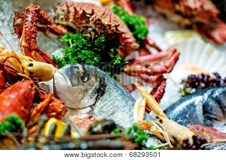 Raw Fish, crab and other seafood on ice