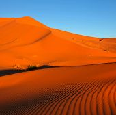 stock photo of sahara desert  - Sahara desert - JPG