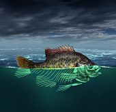 foto of groundwater  - Water pollution and polluted ocean concept as a fish with half of the body underwater as a skeleton for environmental and conservation concerns - JPG