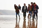 pic of multi-generation  - Multi Generation Family Walking On Winter Beach With Dog - JPG