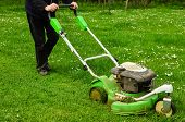 stock photo of grass-cutter  - Gardener mowing green grass lawn with push mower