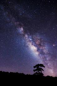 picture of sagittarius  - Milky Way at Phu Hin Rong Kla National Park - JPG