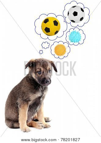 Cute puppy thinking about balls isolated on white