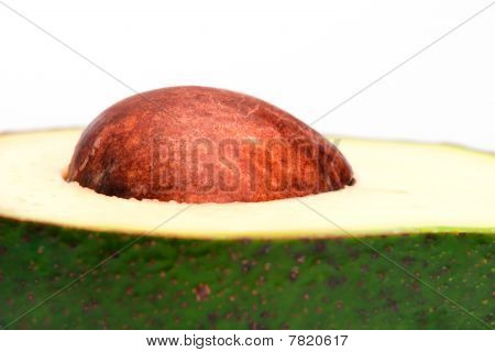 A Closeup Of Avocado Pit Isolated On White Background