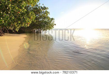 Sunset in the Atlantic Ocean. Cayo Guillermo. Cuba.