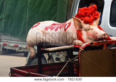 Pig In Funeral Procession