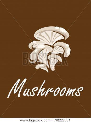 Bunch of oyster mushrooms with text Mushrooms poster