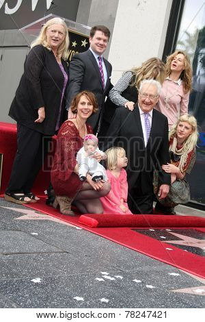 LOS ANGELES - DEC 11:  Don Mischer, Family at the Don Mischer Star on the Hollywood Walk of Fame at the Hollywood Boulevard on December 11, 2014 in Los Angeles, CA