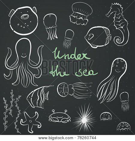 Sea Dwellers.