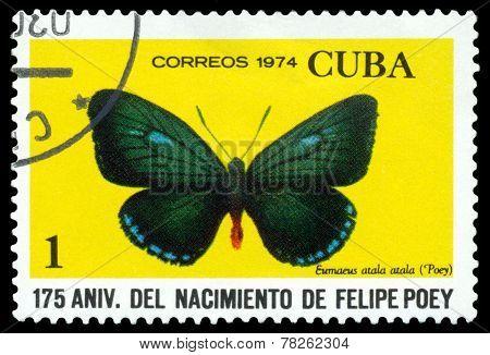 Vintage  Postage Stamp. Butterfly  Eumaueus Atala Atala.
