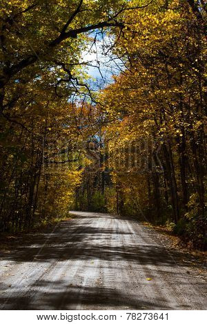 Midwestern back road