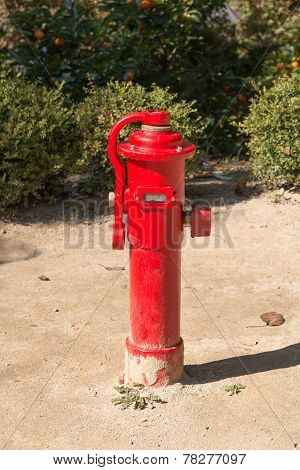 Fire Hydrant In A Outdoor