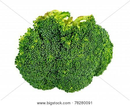 Macro Closeup Of Broccoli Floret Isolated On White