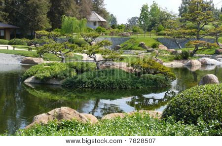 Japanese Garden With Tree And Creek