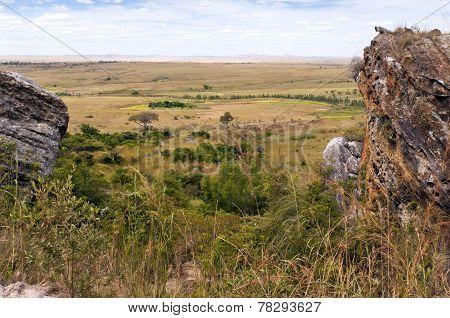 Savanna And Grasslands, Madagascar