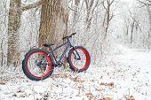 picture of bike path  - Winter biking - JPG