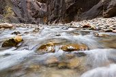 pic of virginity  - beautiful landscape of the Narrows in Zion National park with the virgin river flowing through the slot canyon - JPG