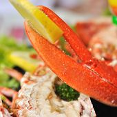 image of claw  - lobster claw with a piece of lemon on a seafood platter - JPG