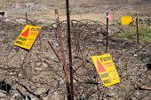 picture of landmines  - Warning signs with  - JPG