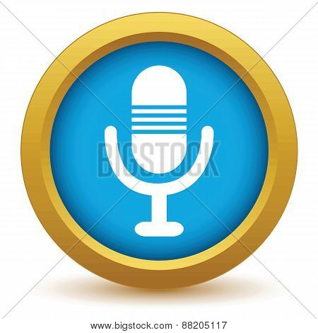 Gold microphone icon
