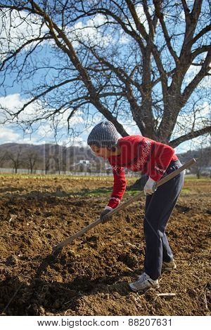 Caucasian Woman With A Hoe Sowing Potatoes