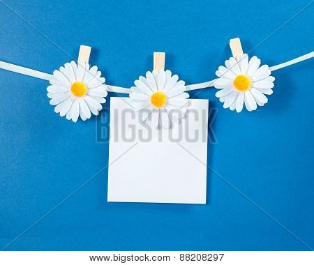 Chamomile flower clothespins with blank paper on blue background