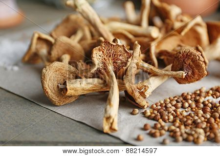 Dried mushrooms with spices on paper, closeup