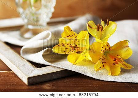 Beautiful spring flowers on wooden table with napkin, closeup