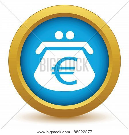Gold euro purse icon