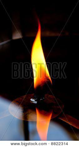 flame on lamp light oil