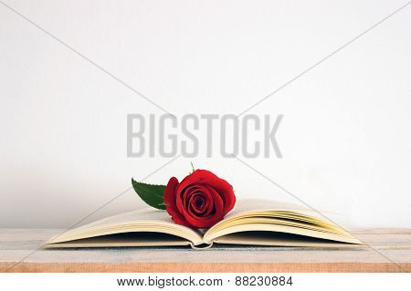 A red rose flower on an open book