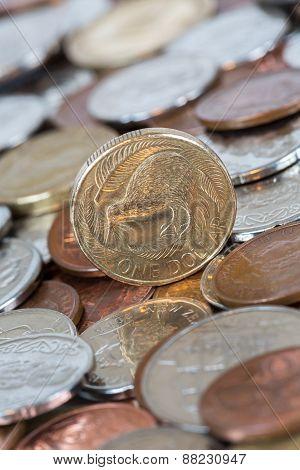 Kiwi Dollar Coin