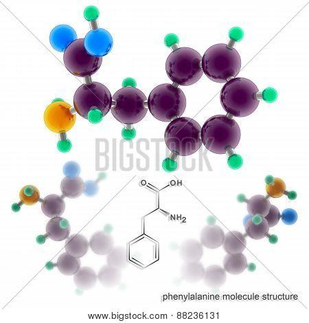 Phenylalanine Molecule Structure