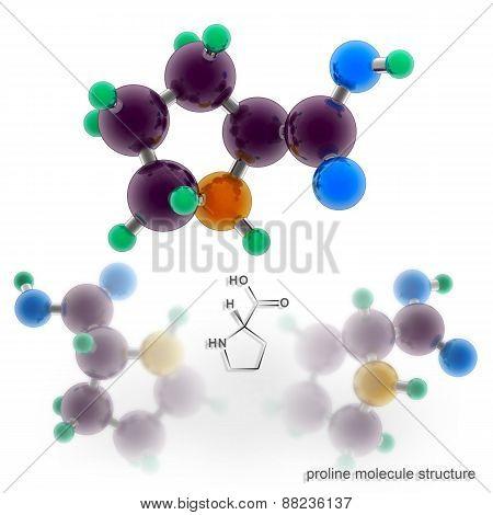 Proline Molecule Structure