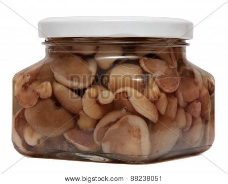 Marinated mushrooms in glass jar isolated on white background. canned food.